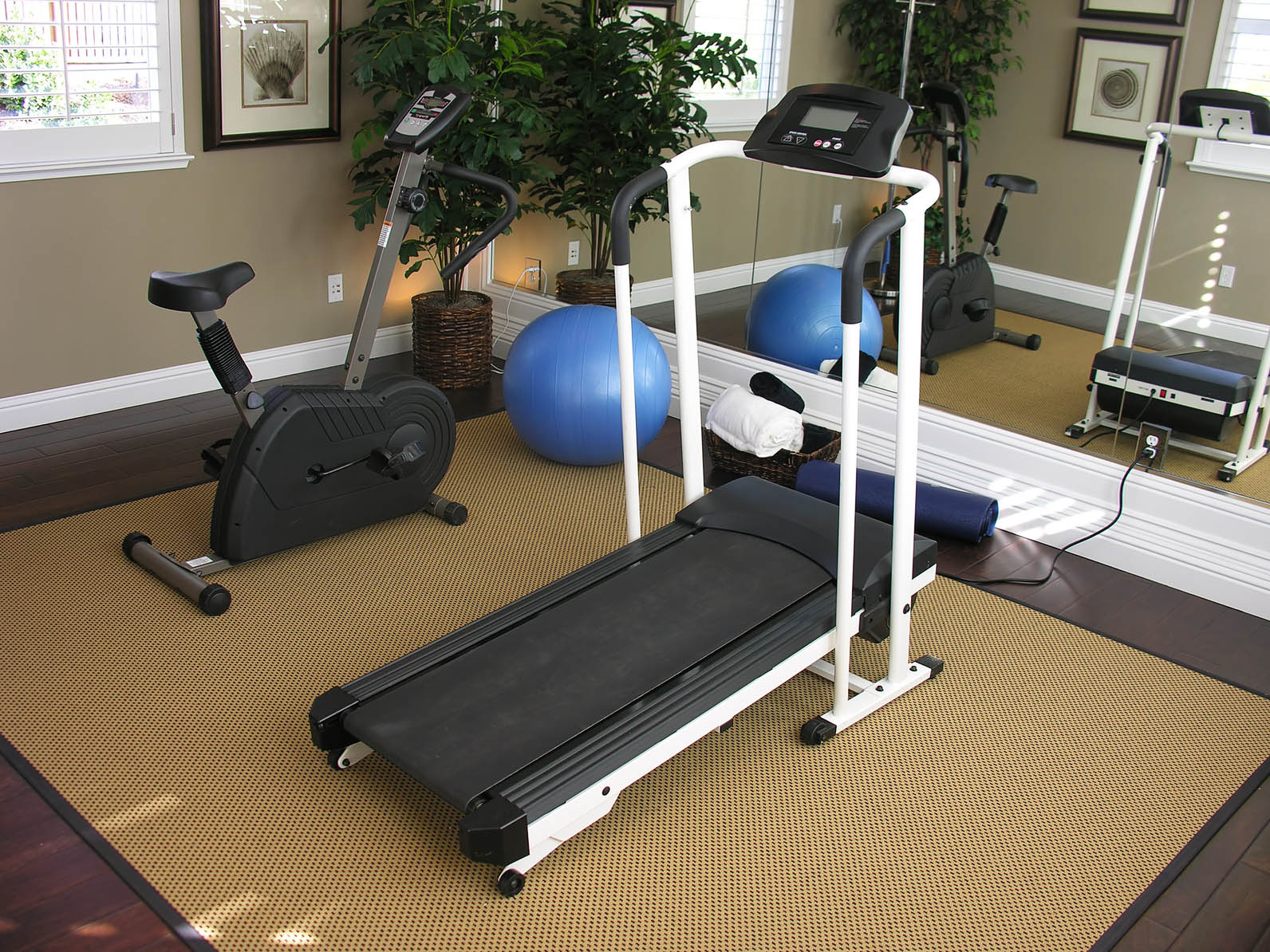 Home gym ideas most in demand design